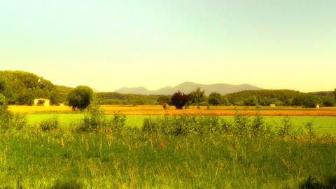 Beautiful Summer Countryside 05 stylized Stock Video Footage
