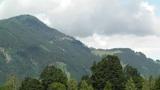 European Alps Austria 20 forest Footage