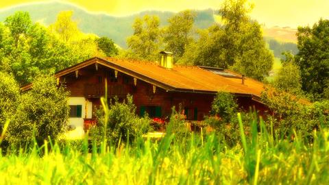 European Alps Austria 38 house stylized Stock Video Footage