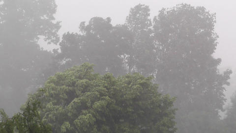 Heavy ThunderStorm 08 Stock Video Footage