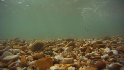 Waves on coast Stock Video Footage