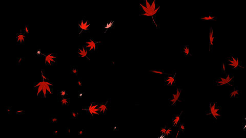 HD Looping Autumn Leaves Animation Stock Video Footage