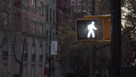 Stop walk sign Footage