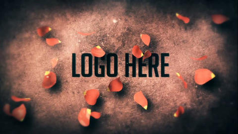 Valentine 's Day Logo After Effects Template