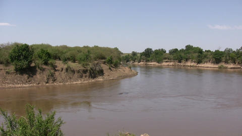 River, Masai Mara Live Action