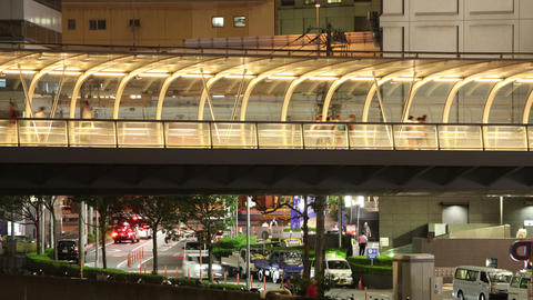 People Walking on a Footbridge Footage