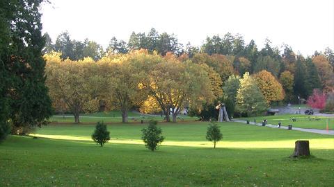 Stanley Park, Vancouver, Canada Footage