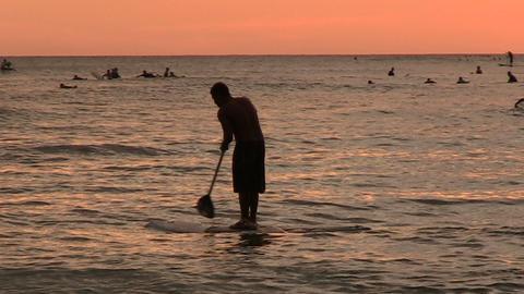 Tourists Swimming in Ocean, Waikiki ライブ動画