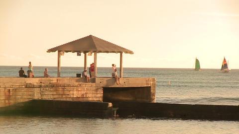 Tourists on Pier, Waikiki ライブ動画