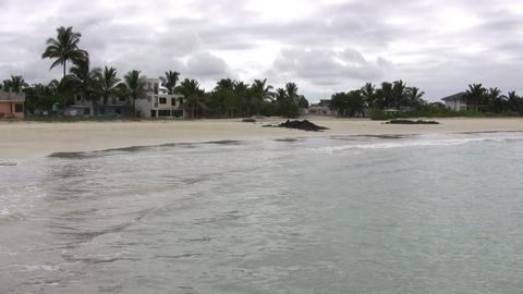 Isabela Island ライブ動画
