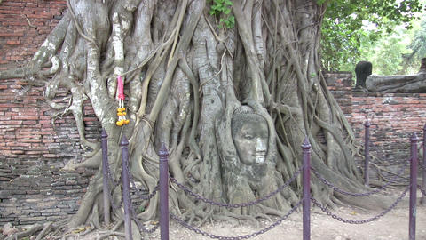 Wat Mahathat, Ayutthaya, Thailand Footage