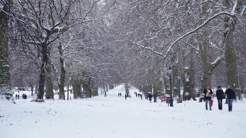People Walking in Snow Covered Park, Hyde Park Footage