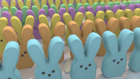 Marshmallow Bunny Treats Animation