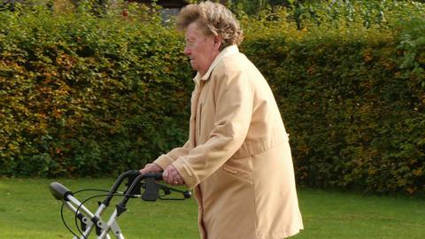pensioner wheel walker in autumn park side 11774 Live Action