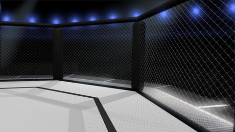 Octagon Shaped Arena Interior Animation