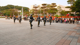 Sentinel come and stand against, give salute, guard change ceremony Live Action