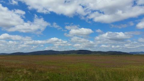 Australian Landscape Flat Landscape stock footage