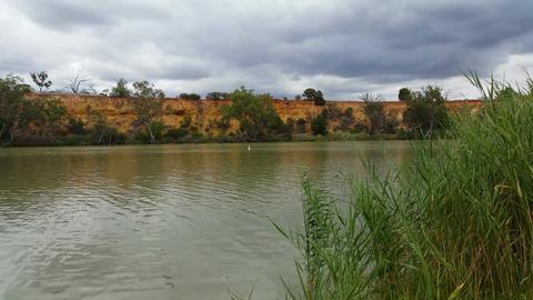 The Murray River Australia - 4K Live Action