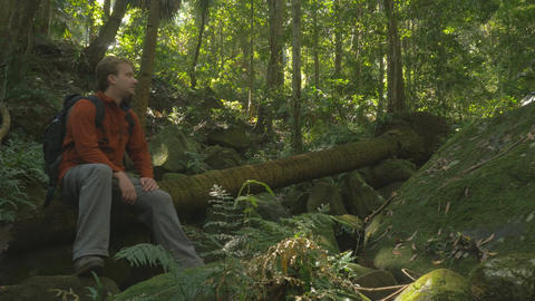 Man With Rucksack Backpack Sitting Looking At Rainforest Woods, Green Tourism stock footage
