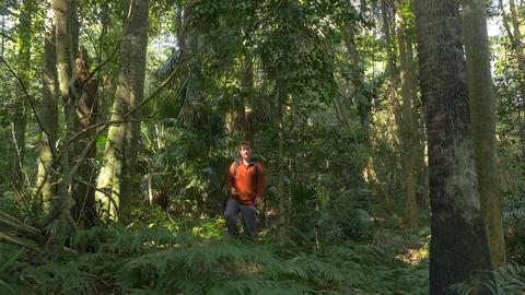 Man Hiking Walking In Jungle Rainforst using compass navigation orienteering Footage