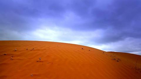 Red Desert Sand Dune Landscape Live Action