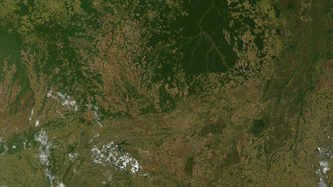 Amazon Rainforest Logging and Deforestation Live Action