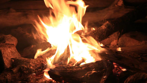 Camping Outdoor Campfire at Night Footage