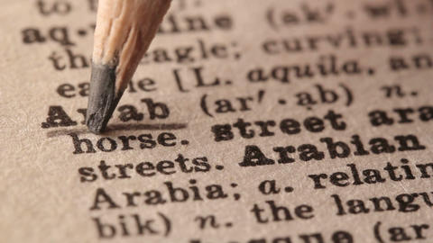 Arab - Fake dictionary definition of the word with pencil underline Footage