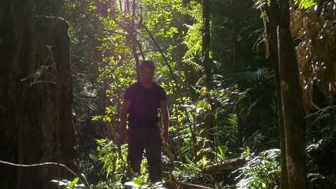 Hiking walking outdoors adventure in rainforest woods Footage