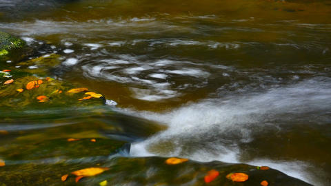 Beauty Of Nature Unspoilt Fresh Water Flowing Over Rocks Autumn Colors stock footage