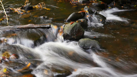 Natural fresh water flowing over rocks autumn colors outdoors Footage