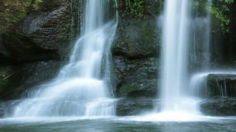 Temperate Rainforest Waterfall taken in NSW Australia Live Action