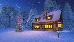 Illuminated christmas tree and rustic house at moonlight night Footage