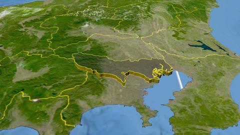 Tokyo - Japan metropolis extruded. Satellite Animation